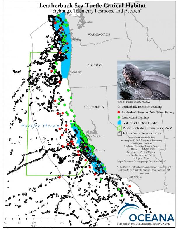 leatherback criticalhabitat withPLCA (2)
