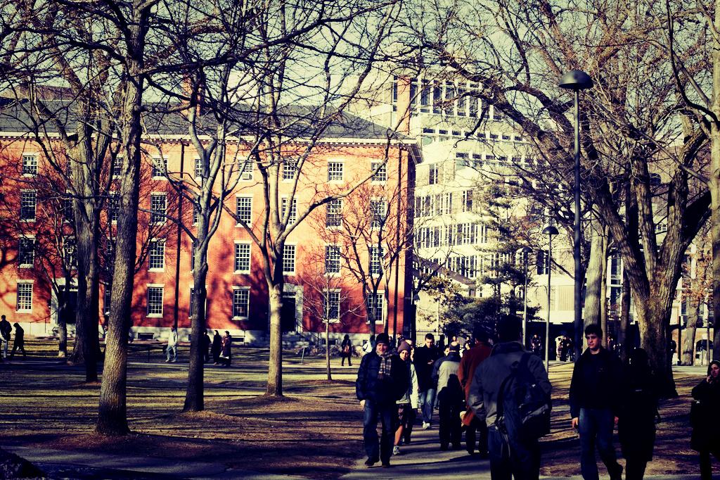 harvarduniversity_Fotor